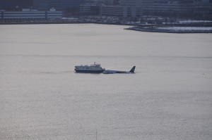 Notlandung im Hudson River (Foto: gregp!/flickr, CC-Lizenz)